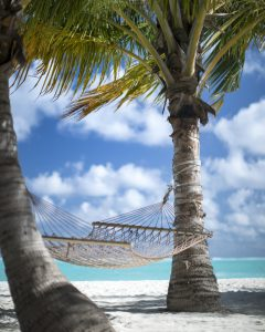 Vakantiedagen