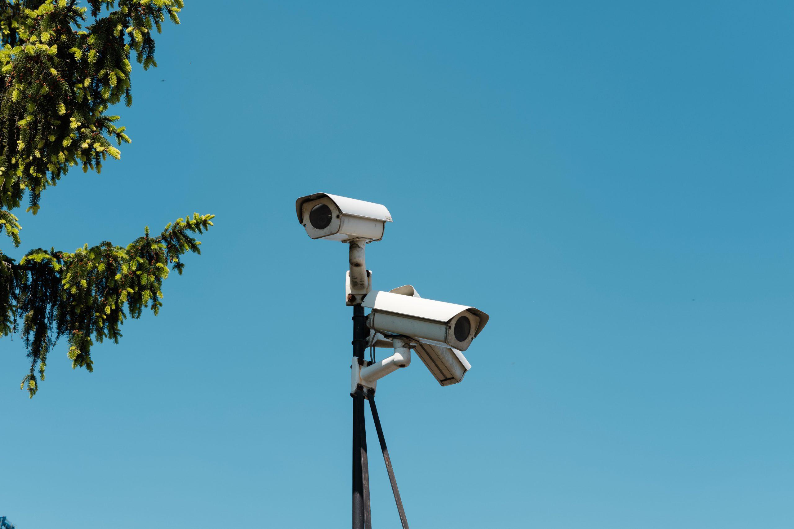 surveillance bagatel